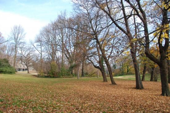 Awbury Arboretum John Bartram Kirk R. Brown