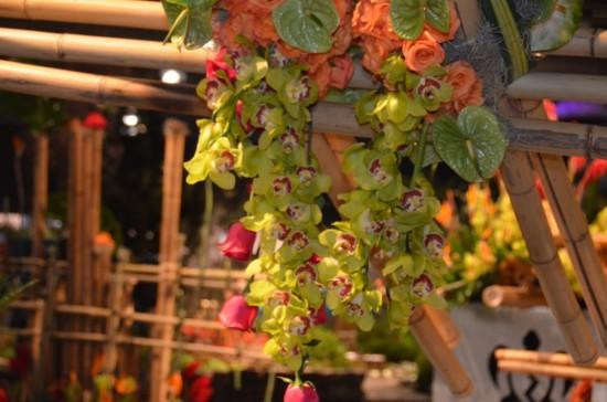 Philadelphia Flower Show, Kirk R. Brown, John Bartram