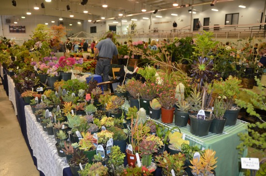 Kirk R. Brown, John Bartram, Western PA Garden and Landscape Symposium, Garden Marketplace