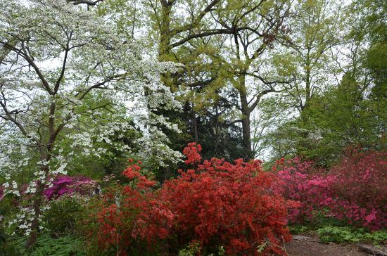 Rutgers Gardens, Holly House, Kirk R. Brown, John Bartram